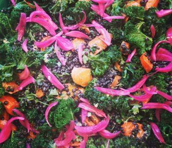 Salat med bagte gulerødder, linser, kål og syltede rødløg.